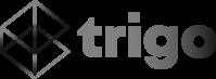 לוגו, חברת Trigo vision