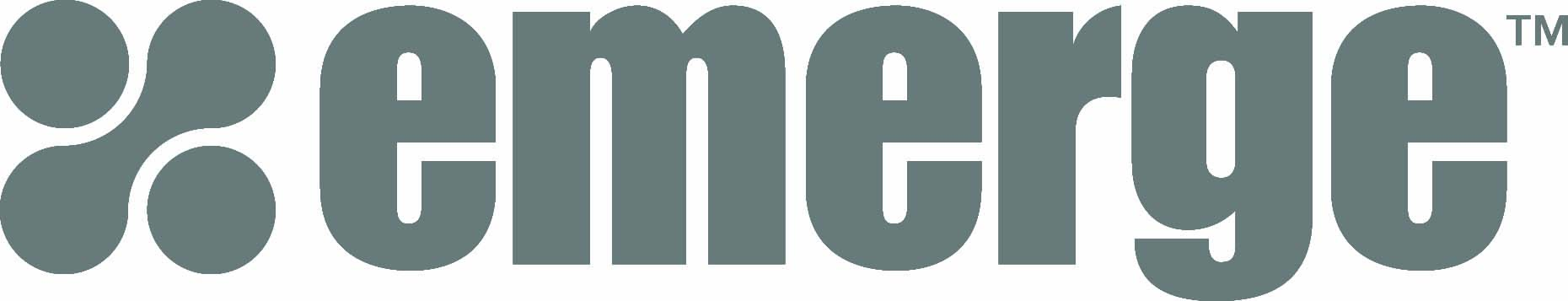 לוגו, חברת Emerge